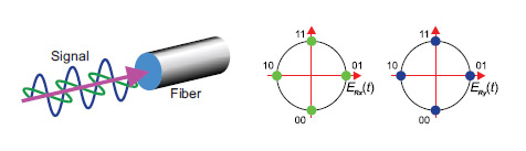 Coherent DWDM systems – Компания «Т8»  DWDM-системы